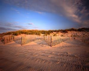 Pugliese Beach Fence